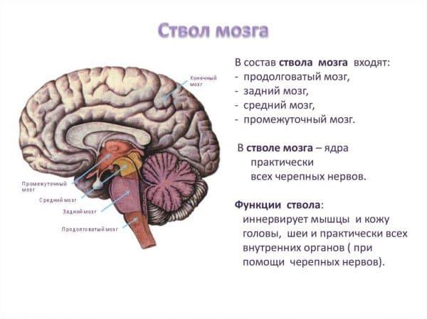 Косоглазие после травмы головы